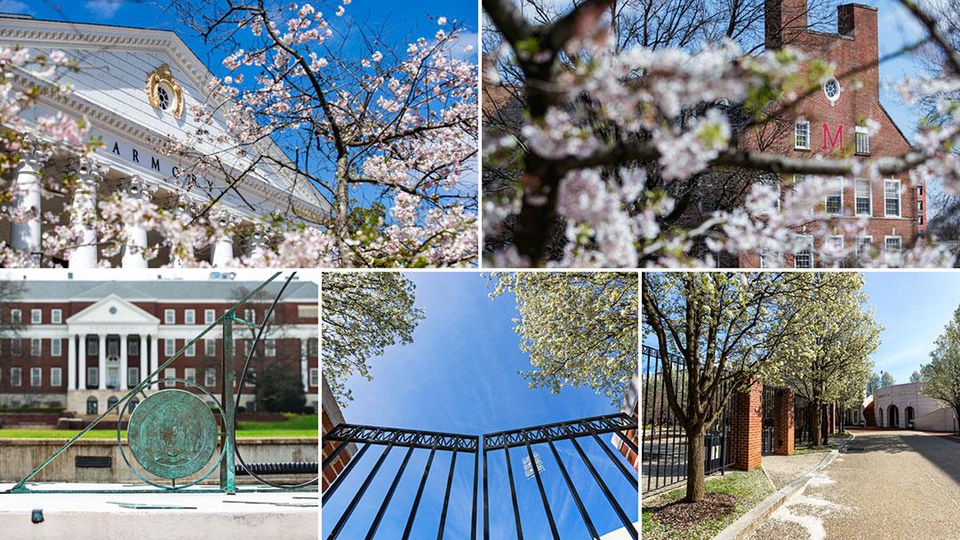 Featured Gallery: Quiet days on Campus