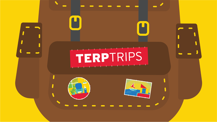 Terp Trips Illustrated Artwork